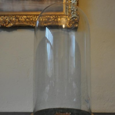 large victorian glass display dome