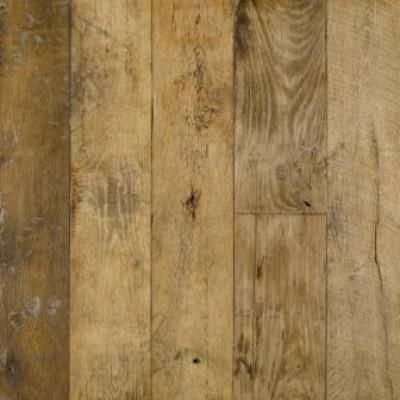 Oak 18the century