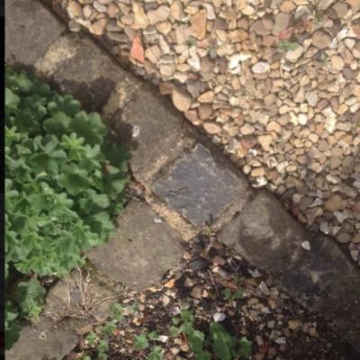 Small York Stone Setts/cobbles