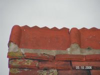 1509230352-Single-roman-ridge-with-a-coxcomb-Photo-Bakers-1.jpg