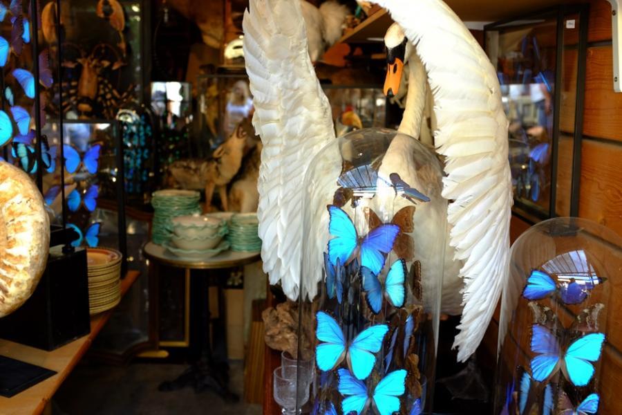 antiques-diva-in-paris-1-s2h.jpg