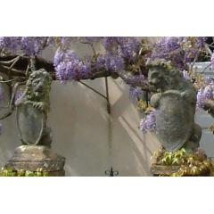 Pair of stone lions with shields