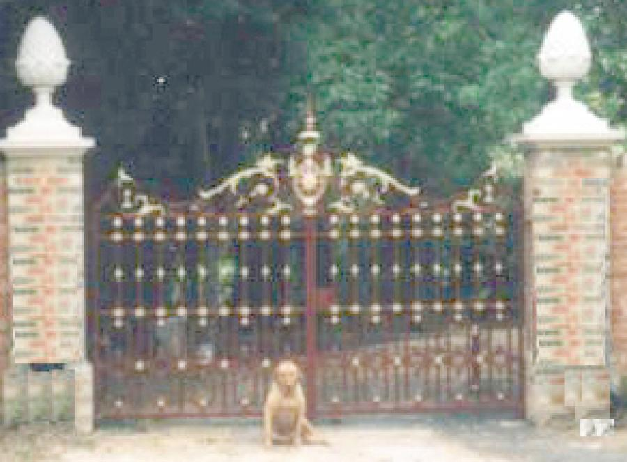 Pair of maroon/gold gates and matching bollards