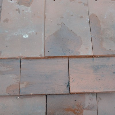Rosemary Rooftiles