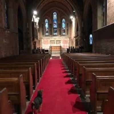 Victorian English Oak Church Pews