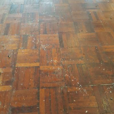 Reclaimed parquet wood flooring