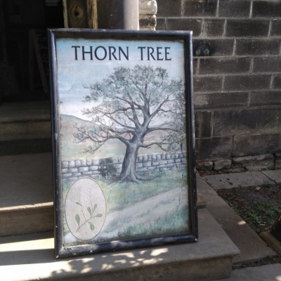 Metal pub sign thorn tree