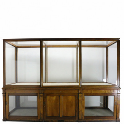 Large High Quality Mahogany Museum Display Case From The V & A, London, Circa 1900