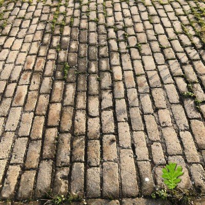 A Great Cobble Deal