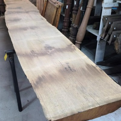 567 cm old oak-board with tree edge in strength of 8 cm