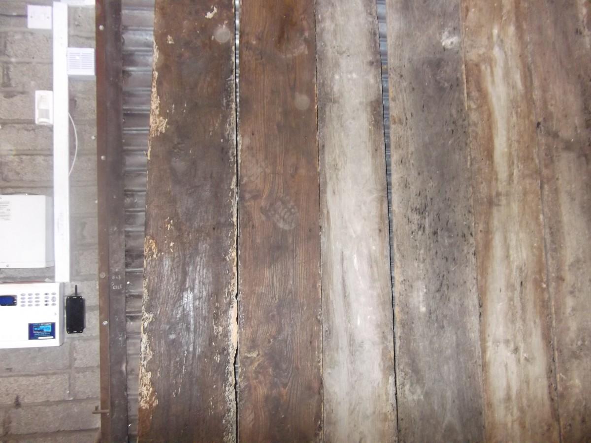 "Reclaimed elm floorboards 10"" wide"