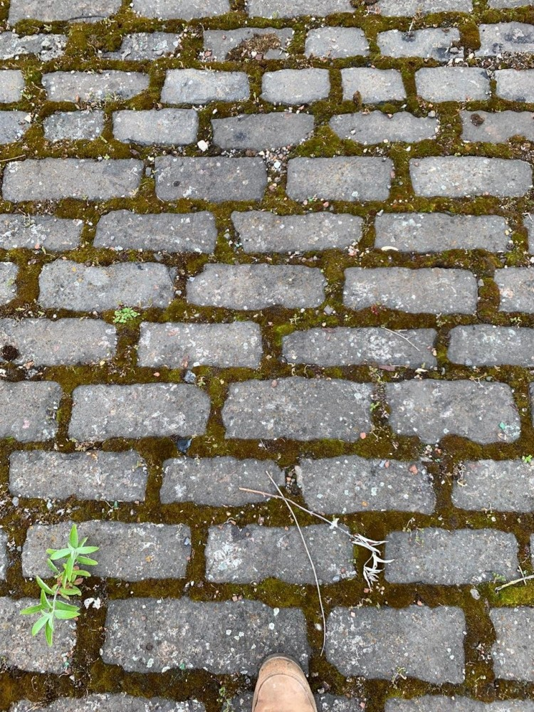 Reclaimed Cobbles , Abacus Stone Sales
