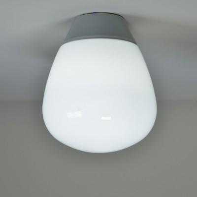 Porcelain & Opal Glass Ovoid Globes