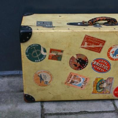 Canvas Travel Trunk