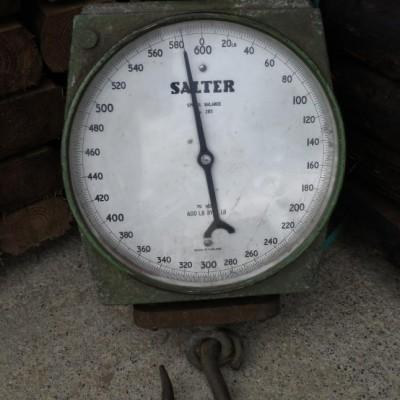 Salter Spring Balance Scales