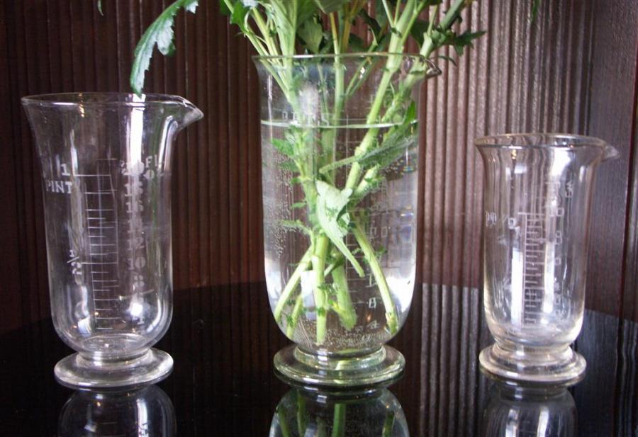 antique laboratory vases vessels