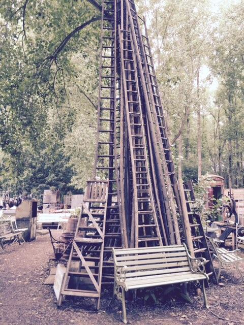 Cherry picking ladders