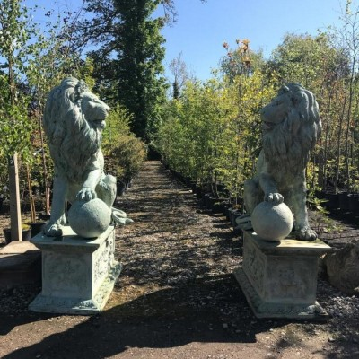 Pair of Bronze Lions on Decorative Plinths