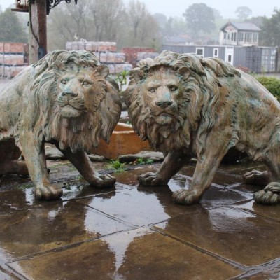 A Stunning Pair of Bronzed Lions